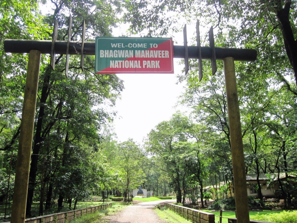 Bhagwan-Mahaveer-Sanctuary-and-Mollem-National-Park-1
